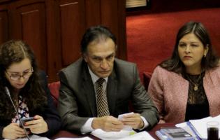 Fiscal Castro: la mayoría de congresistas tienen vínculos con «Los cuellos blancos»